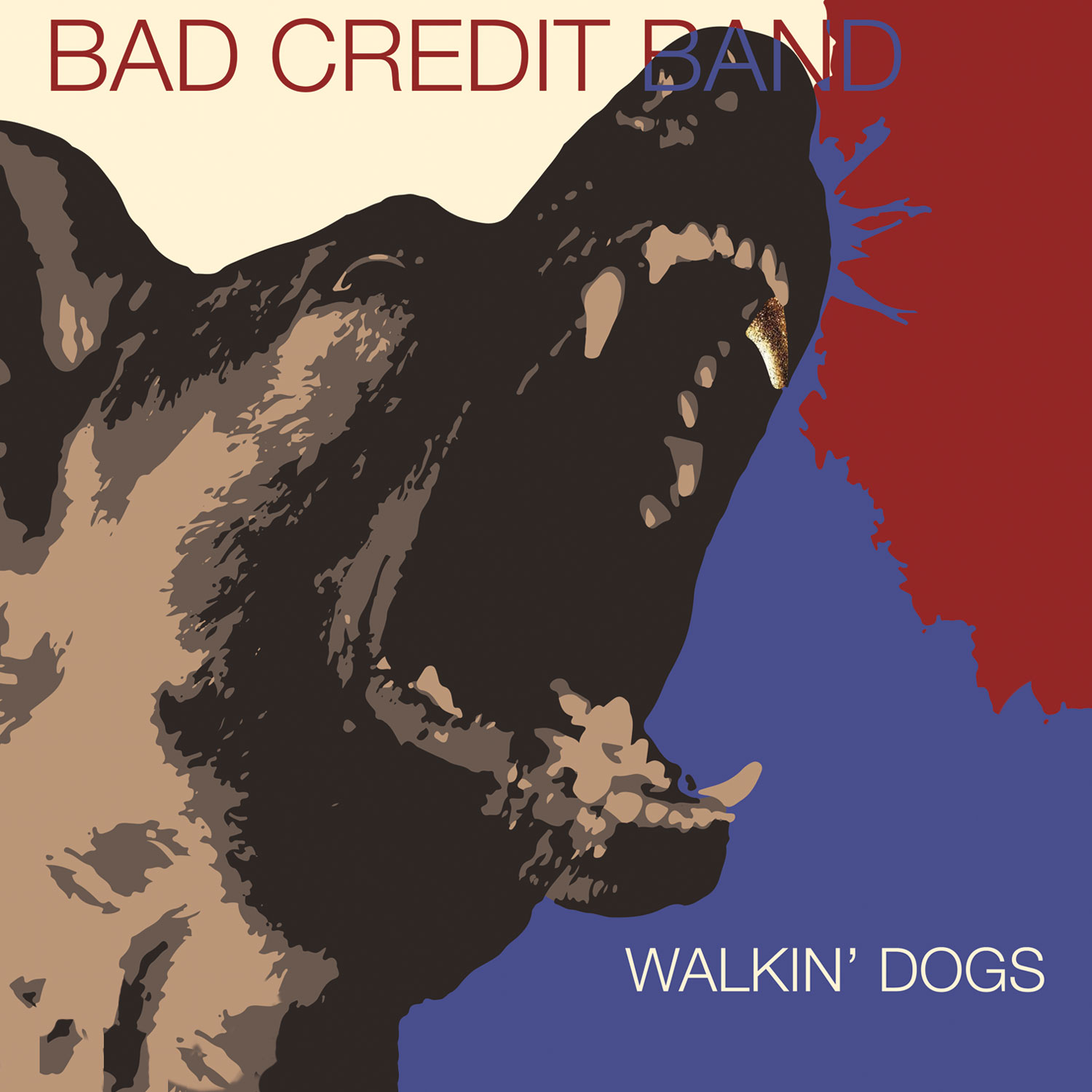 Bad Credit Band - Walkin' Dogs